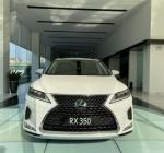 Tư vấn mua xe ô tô Lexus 5 chỗ