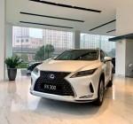 Các dòng xe ô tô Lexus 7 chỗ, 5 chỗ tại Việt Nam